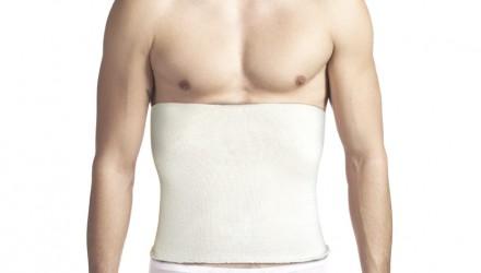 Pancera dorsale